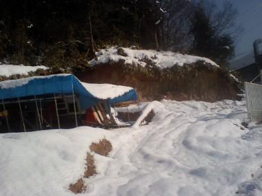 雪の重みで潰れた作業テントとても重宝していたのに・・・ コンバインもかわいそうに