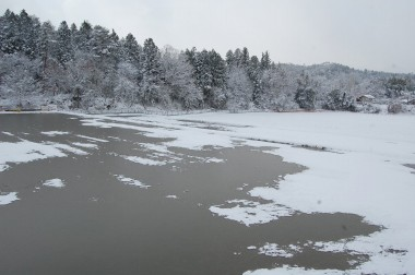 冬季も入水(湛水)状態