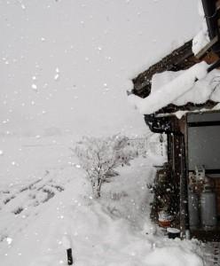 ストロボで光る雪