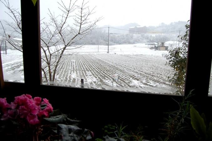 部屋から春の雪を