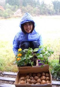 中さんがジャガイモ、トマト、ナス・青シソ、マリーゴールドなどを植付に来られた