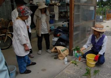 5月のMOA自然農法勉強会 液肥作りの様子