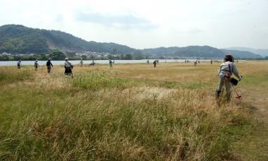 芦田川河川敷での草刈り実習
