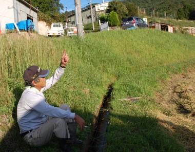 松さんもゆとりが、指で風向きを観ているのではありません、ツバメが飛んでいる虫を捕るのをみて・・・