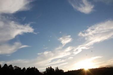田んぼで見る秋空