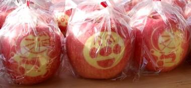 こんなリンゴもありました