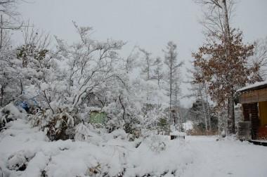 先日の収穫祭の場所もすっかり雪に