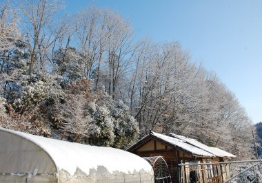 朝は抜けるような晴天で寒かった