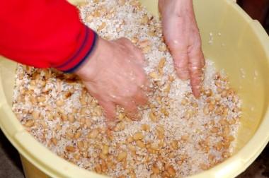 炊いた大豆2.2:米麹1:塩0.45をよく混ぜる
