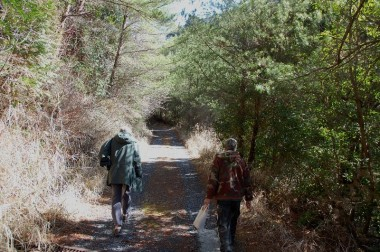 一般車両通行止の林道を17分登って