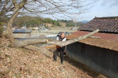 残った幹の部分をSUMIさんが伐る