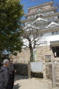 新幹線駅北側の福山城へ