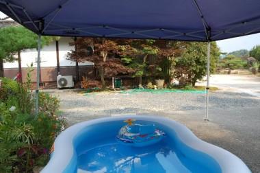 この暑さではプールが良さそう