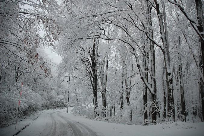 雪のドライブとなった