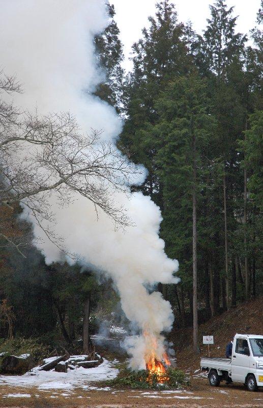 この時期は生木でもよく燃える