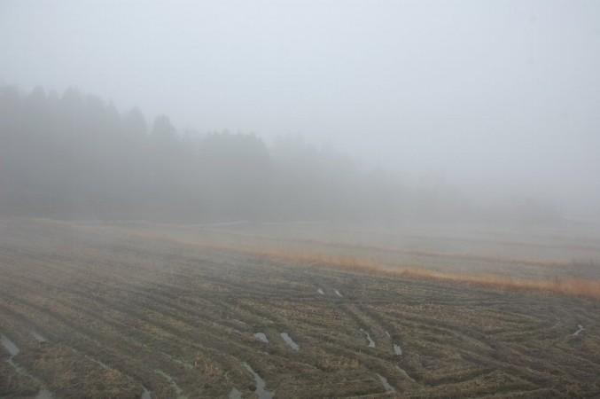 昼までこんな霧の中