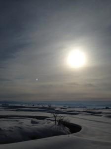 雪の上を歩いてみたくなりそう  通勤途中 2