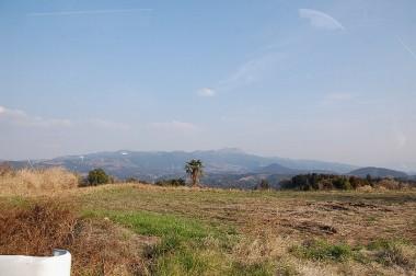 遠方は阿蘇の外輪山