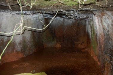 水滴の音を頼りにヤブをかき分けたら洞窟に行き着いた