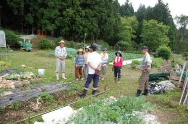 会員さんの畑で野菜を見ながらの勉強会