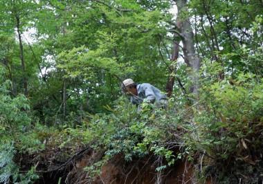 崖っぷちの危険なところは手作業で