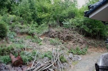 伐採と処理が終わったところ