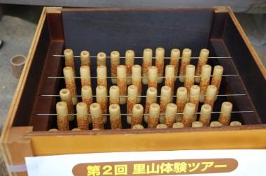 出来上がった竹輪の燻製