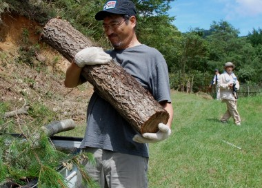 生木は結構重たいですよ(と、言う事に)