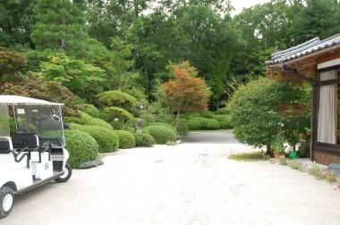 家の周りや道路はカートで移動する