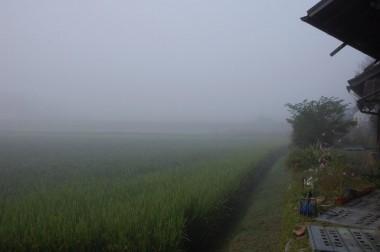 霧の深い朝(家の前)