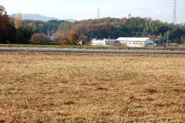 刈り終えたら千代田温泉がよく見えます