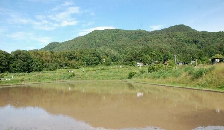 山裾が千代田の「よみがえりの水」が出るところ