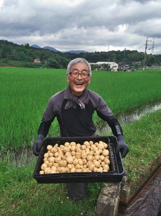 掘った一口サイズのジャガ芋を水路で洗う