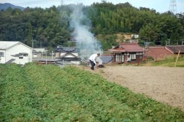 今回の芋掘りは広さんが声掛けしてヤスコさんが段取りをすすめてくれて楽しい一日でした