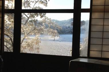 朝のコーヒーを飲みながら窓の外を