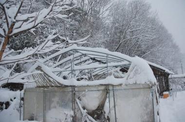 雪で潰れにくいハウス