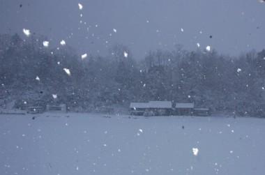 朝の自宅は雪の中