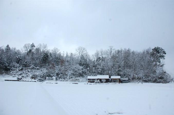雪の合間に自宅と裏山を写す
