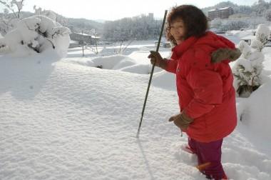裏山の雪景色を観に登ります