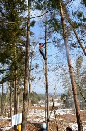 木登りの実演