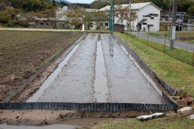 左は平らにしただけ、右は根切りネットを苗床に密着させた様子
