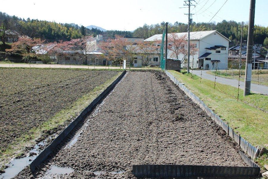 ここに苗代2畝作ります