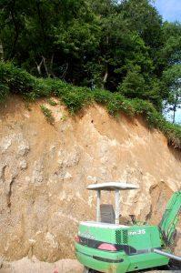 倉庫裏の崖に穴を掘っていたのはヤマセミだった