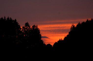 田んぼから1㎞離れた家に着いた時にはすっかり日が落ちた