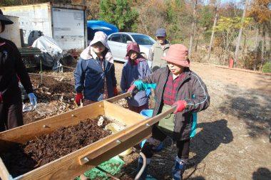 今年の堆肥をフルイにかける