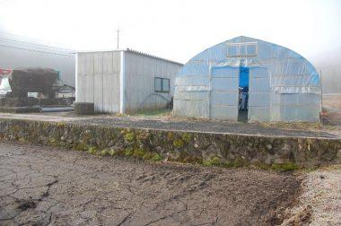 ビニールハウスと倉庫の間が掘削ポイント