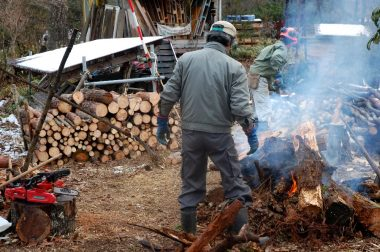 5m位の丸太を薪用に45㎝に切る