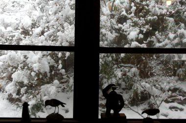 窓辺と雪の様子