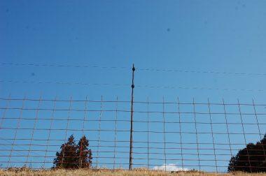メメッシュ筋と電気柵の併用ッシュ筋と電気柵の併用