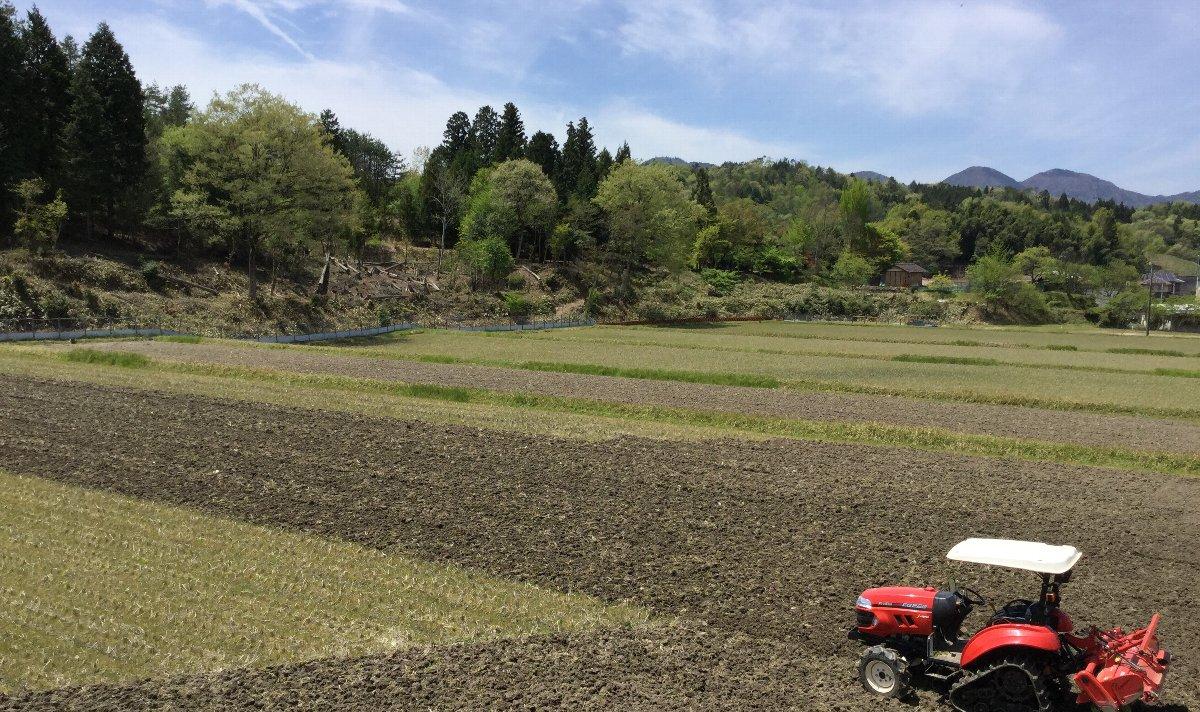 近所では田植が始まった、うちは荒起しがこれからです
